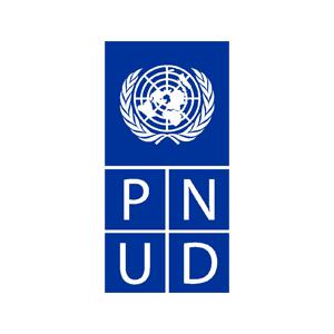 Partners-asity-PNUD